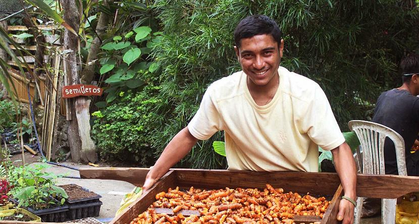 Ecuador Farm Stay